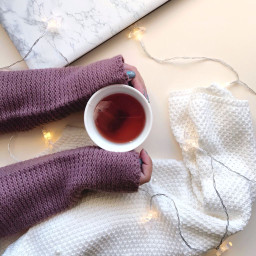winter mug cup tea sweater freetoedit