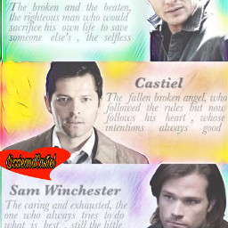 supernatural spn teamfreewill