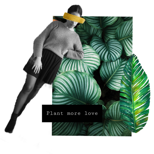 #freetoedit #girl #collage #love #plant #callout
