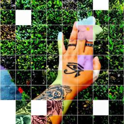 freetoedit flower tattooed tattoo moda