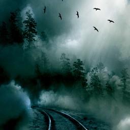freetoedit foggy