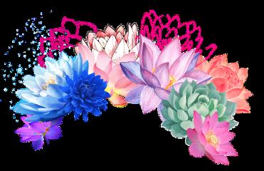 flower flowerheadband lotus cavtusflower flowers freetoedit