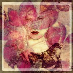 freetoedit nesting hidden collageart