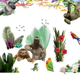 freetoedit sloths tropical stickerart