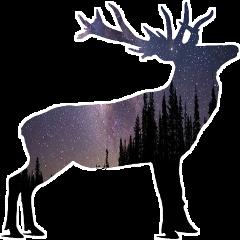 deerseason deer deers deerfilter deerantlers freetoedit