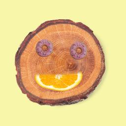 freetoedit wood dount
