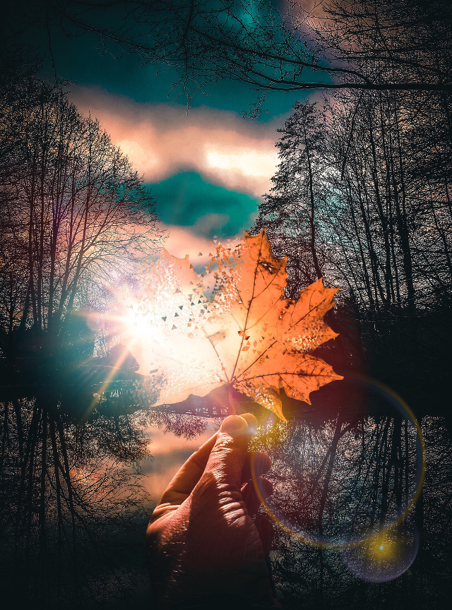 #surreal #games ♥️✨ #freetoedit #nature #naturephotography #naturelovers #natureart #moody #moodygrams #instagram #leaf #leafes #orange #interesting #art #sky #photography #people #summer #holding