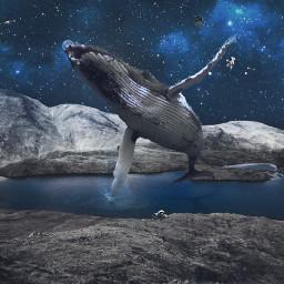 freetoedit space galaxy lake nature