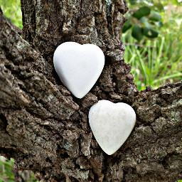pcheartshapes heartshapes