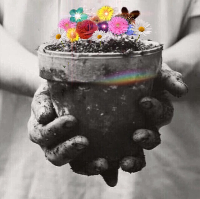 #freetoedit #interesting #blackandwhite #flowers #sweet #spring
