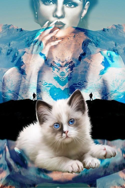 #doubleexposure  #mixedmediaart #meow