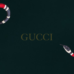 freetoedit labelbackgrounds backgrounds brands gucci