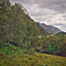 forestpark scotland fattal2 vibrantcolors feastmagic