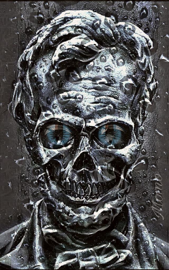 #freetoedit #skull