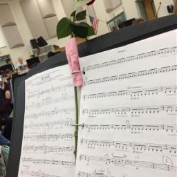 orchestra rose music beautiful sheetmusic freetoedit