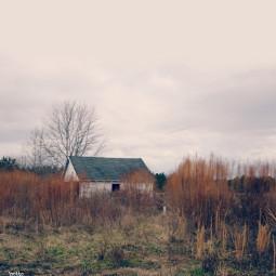freetoedit abandoned rural myoriginalphoto