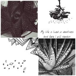 plant dark aesthetic life darkness freetoedit