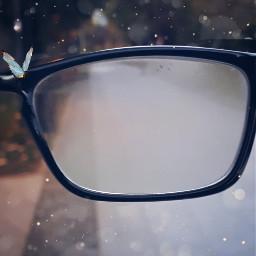 dustbrush freetoedit butterfly blurry