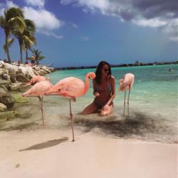summer polishgirl happy holiday beach