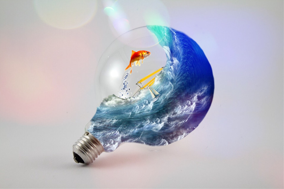 Lightbulb #freetoedit #remix