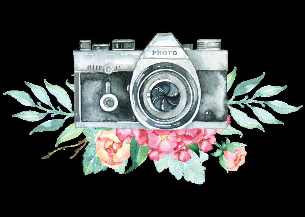 Travel Blog Cameras