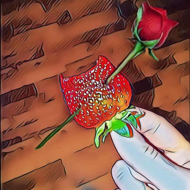 #FreeToEdit#retro#flower#food#love#colorful#coffee#coffeelove#love#artphotography#art#beautiful#beautiful#rose#roses#flowersfollower#sex#nature#design#animal#cat#love#Muslims#islam#hijabfashion#birthday#food#vintage#muslim#hijab#photography#cute#collage#beauty#birthday##baby #balloon #colorful #photography #beautiful#rose#roses#flowersfollower#nature#design#animal#cat#love#Muslims#islam#hijabfashion#birthday#food#vintage#muslim#hijab#photography#cute#collage#beauty#birthday##baby #balloon #colorful #photography #бабочки #красота #любовь #лайк#котенок#FreeToEdit #hijabfashion#photo #photooftheday #photogrid #photoshoot #photographer #photos #photograph #photochallenge #photoftheday #photoaday #photoofday #photoday #pic #instagramanet #instatag #инстафото #инстаграманет #инстатаг #фото #фотосессия #фотограф #фотография #фотосет #фотодня #фотка #фотки #цвет #экспозиция #выдержка #искусство#hairart#FamilyBBQ #remixit #onelove