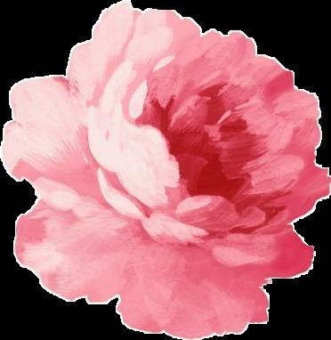 Tumblr pink flower pinkflower mightylinksfo