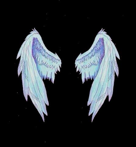 asas wings tumblr anjo angel