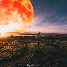 imagination_infocus beauty redmoon beach surfer