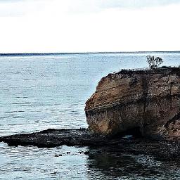 ranchopalosverdes rockybeach