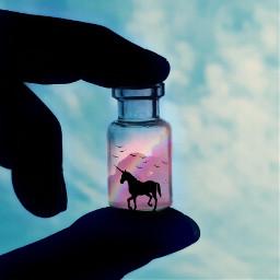 freetoedit art photography unicornstickers