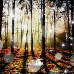 freetoedit beautifulpic fantasy