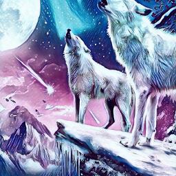 wolves midnight freetoedit