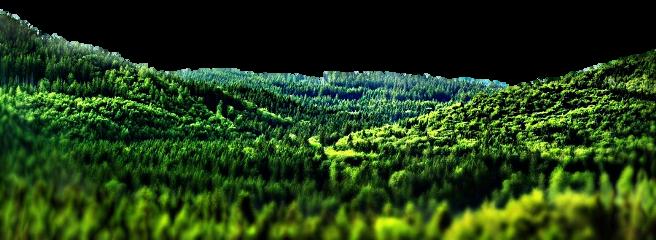 greenhills greenhillzone hills tree freetoedit
