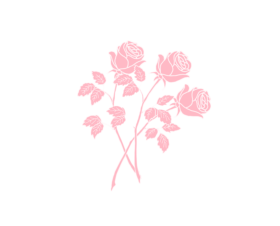 Roses Flower Pink White Tumblr Draw Cute Kill Love Beat