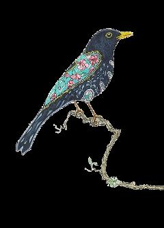 bird ftestickers freetoedit