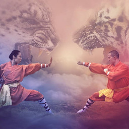 kungfu shoalin tiger leopard composition