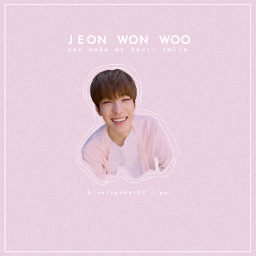 wonwoo seventeen wonwoosvt jeonwonwoo kpop