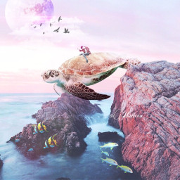 freetoedit turtle nature picsart sea photography moon galaxy animal petsandanimals sky interesting challenge pink water night summer travel fly