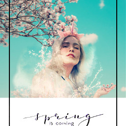 ircspringtimefashionista springtimefashionista freetoedit spring flower