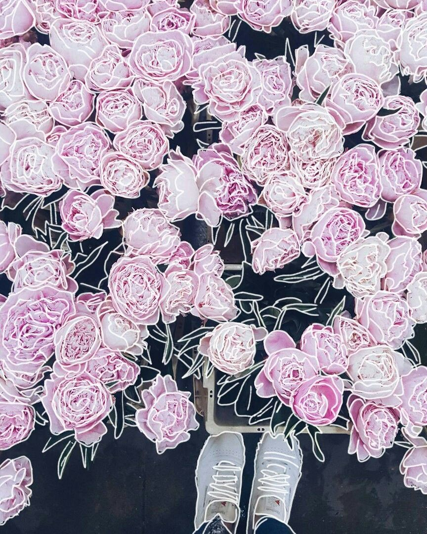 #top #popular #spring #art #photo #monday #flower #magic #sign #beautiful #best #space #best_work #mutual_lay #mutual_subscribe #instagram #magic #safekeeping #love #edit #wow #creative #outlines #gallery #art #photo #picsart #graphics #instagram ##follow4follow #peonies