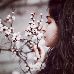 armenian armeniangirl spring blossom springtime