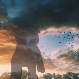 freetoedit sky birds clouds sunset