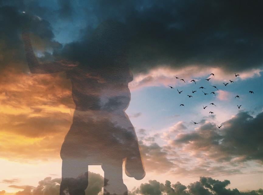 #freetoedit #sky #birds #clouds #sunset