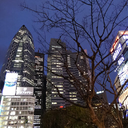 nishishinjyuku west shinjuku tokyo buildings freetoedit