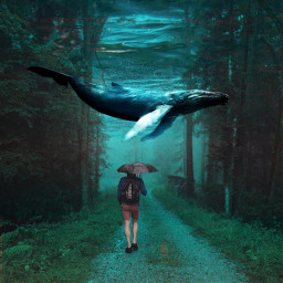 underwater whale forest freetoedit remixit