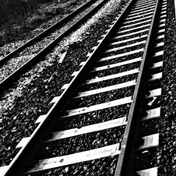 rails station blackandwhite myoriginalphoto treviso