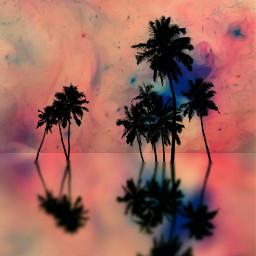 coloroutline silohuette palmtrees liquidpainting watereffect