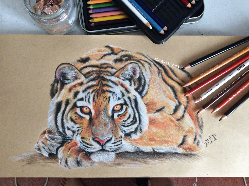 Aaaaaaaa finally finished this tiger... looks better in real life though ahaha #art #drawing #tiger #prismacolor