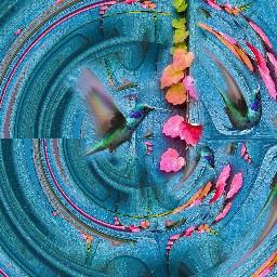 freetoedit momentsoflife hummingbird